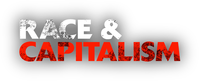 Essay on capitalism